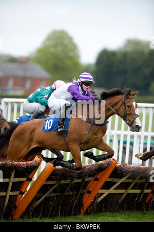 Horse racing action at Plumpton Racecourse, East Sussex, UK. Picture Jim Holden. Stock Photo