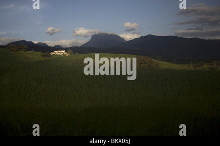 A white house sits in a wheat field in Prado del Rey, Cadiz Province, Spain, March 18, 2008. Photo/Chico Sanchez - Stock Photo