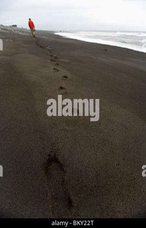 A man walks along a black sand beach on The Lost Coast, California. - Stock Photo