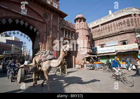 Camel cart. Kote Gate. Bikaner. Rajasthan. India - Stock Photo