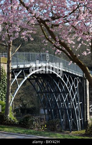 The Ironbridge in Shropshire England Uk framed in spring blossom - Stock Photo