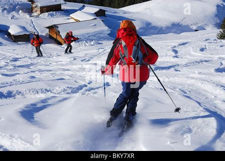 Woman downhill skiing, alpine lodge in background, Feldalpenhorn, Kitzbuehel Alps, Tyrol, Austria - Stock Photo