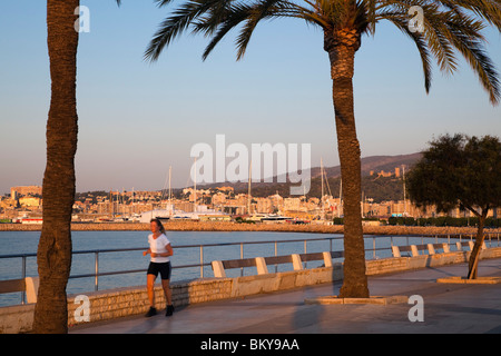 Jogger at waterfront promenade Avinguda Gabriel Roca in the morning sun, Palma, Mallorca, Balearic Islands, Mediterranean - Stock Photo