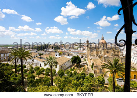 View from the tower of Alcazaba in Jerez de la Frontera towards the Cathedral and the old town, Andalucia, Province - Stock Photo