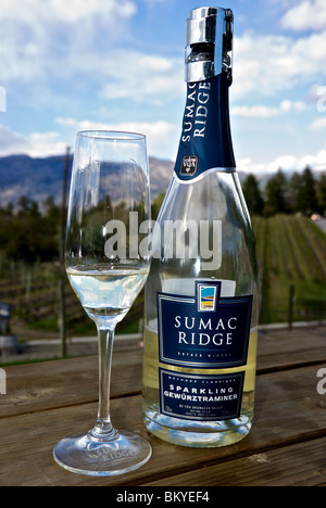 Tiny bubbles rise in a glass and bottle of sparkling white Gewurztraminer wine made in the classic Champagne style - Stock Photo