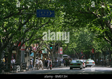 French Concession, Green - Stock Photo