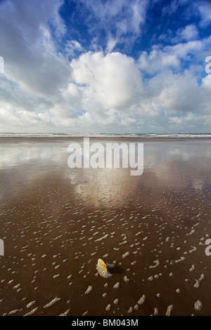 Newgale beach, St Brides Bay, Pembrokeshire, Wales, UK - Stock Photo