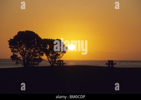 Picnic Table at Sunset, Hokianga Harbour, near Opononi, Northland, North Island, New Zealand - Stock Photo