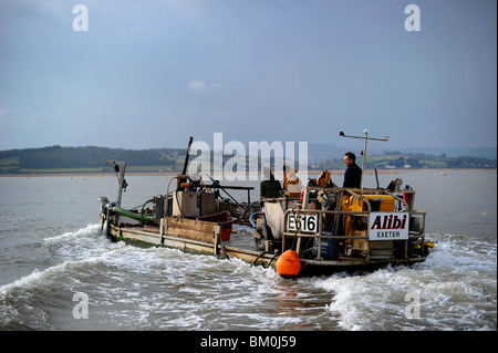 A mussel barge pictured working on the Exe Estuary, Exmouth, Devon - Stock Photo
