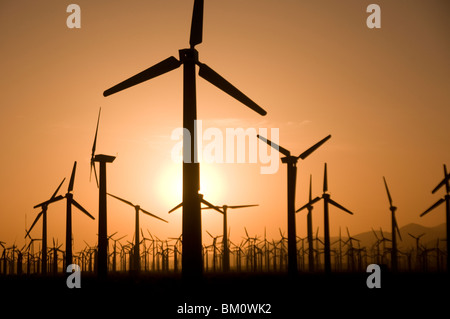 Windmill farm at sunset in Palm Springs Coachella Valley Southern California USA - Stock Photo
