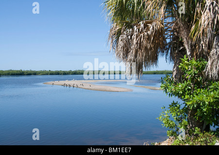 J.N. 'Ding' Darling Wildlife Reserve, Sanibel Island, Gulf Coast, Florida, United States of America, North America - Stock Photo