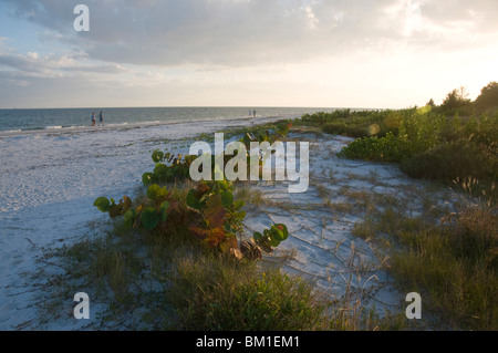 Sunset on beach, Sanibel Island, Gulf Coast, Florida, United States of America, North America - Stock Photo