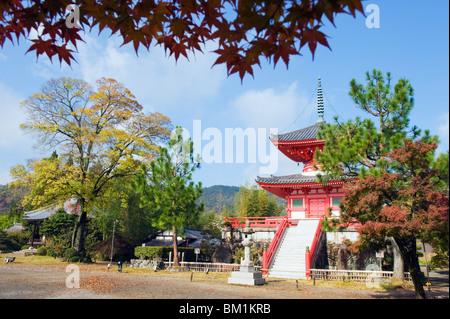 Daikaku ji (Daikakuji) Temple, dating from 876, Sagano area, Kyoto, Japan, Asia