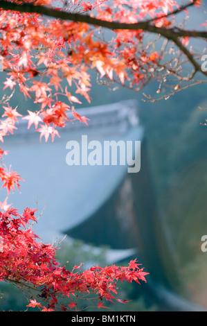 Autumn maple leaves at Nison in (Nisonin) Temple, Sagano area, Kyoto, Japan, Asia - Stock Photo