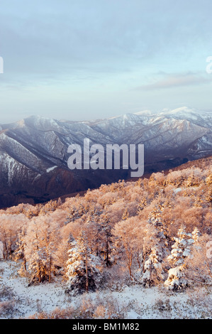Sunrise over snow covered Towada Hachimantai National Park, Iwate prefecture, Japan, Asia - Stock Photo