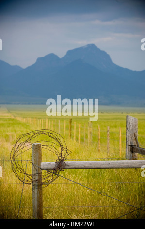 Rusty barbed wire on fencepost, Madison River Valley, Montana, USA - Stock Photo