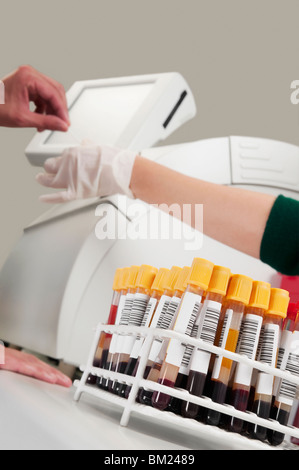 Lab technician testing a blood samples in a laboratory - Stock Photo