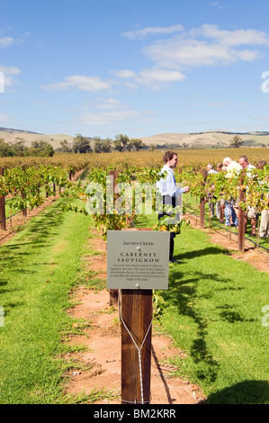 Visitors being shown the vines at Jacob's Creek winery in the Barossa Valley in South Australia - Stock Photo