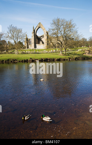 'Bolton Abbey', Wharfedale, North Yorkshire, England. - Stock Photo