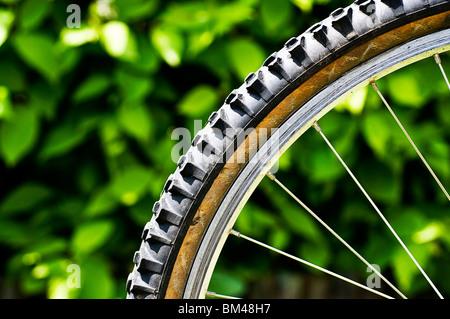 Mountain bike tyre - Stock Photo