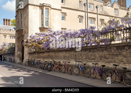 Bicycles parked outside the entrance to Sidney Sussex college Cambridge University, Cambridge UK - Stock Photo