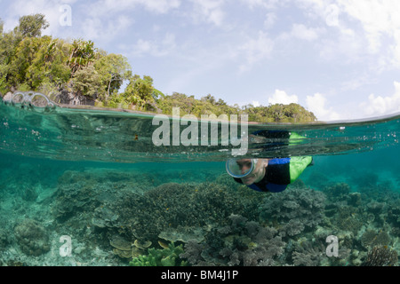 Snorkeling at shallow Coral Reef, Raja Ampat, West Papua, Indonesia - Stock Photo