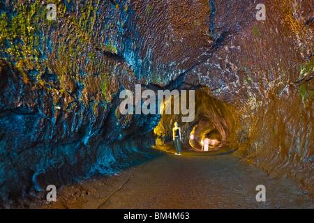 Thurston Lava Tube, Volcanoes National Park, Kilauea, Big Island, Hawaii, USA - Stock Photo