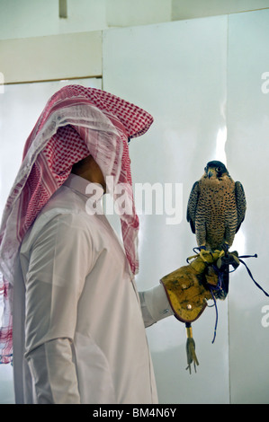 Qatar, Doha, Falcon Center, falcon and handler - Stock Photo