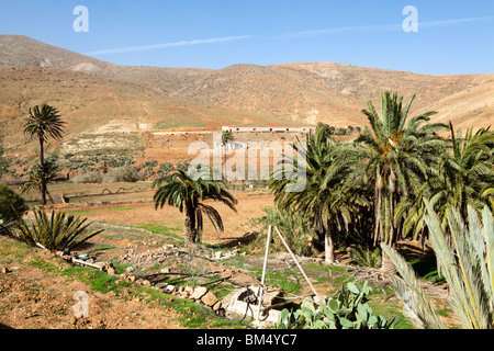 Irrigation works in the dry, rocky, volcanic interior of the island south of Betancuria on the Canary Island of - Stock Photo
