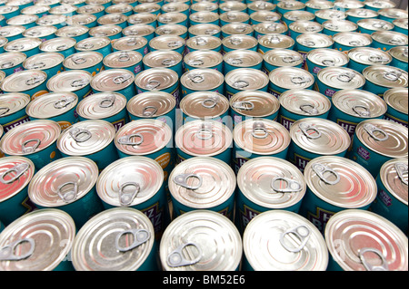 Rows of tinned food, UK - Stock Photo