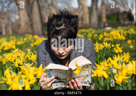 Young woman reading a book amongst the daffodils in St James's Park, London, England, UK - Stock Photo