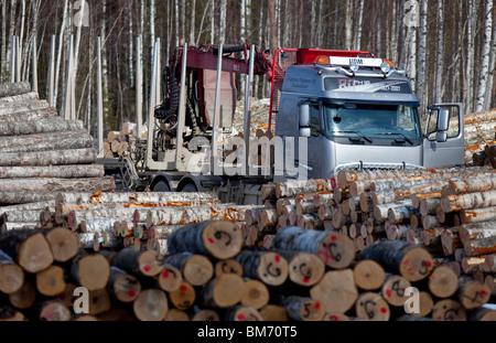 Finnish logging truck between birch log piles in log collection point  , Finland