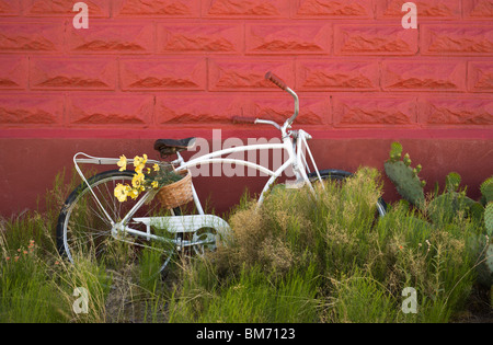 An old abandoned bicycle, parked in the weeds, leans against the wall of the Red Schoolhouse in Three Rivers, New - Stock Photo