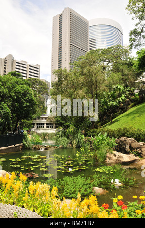 Artificial Lake, yellow blooms and lotus flowers, looking towards the Conrad and Marriott Towers, Hong Kong Park, - Stock Photo