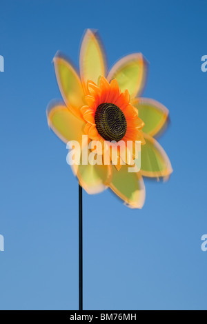 UK, Europe. Sunflower flower spinner spinning in the wind with blue sky - Stock Photo