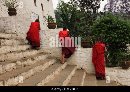 Buddist monks on the steps of Punakha Dzong, Bhutan - Stock Photo