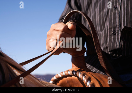 Man holding the reins of horse, close-up, focus on hand - Stock Photo