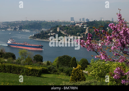 Rumeli Hisari,Thracian Castle,1452 fortress,judas-tree,overlooking Bosphorus, Istanbul - Stock Photo