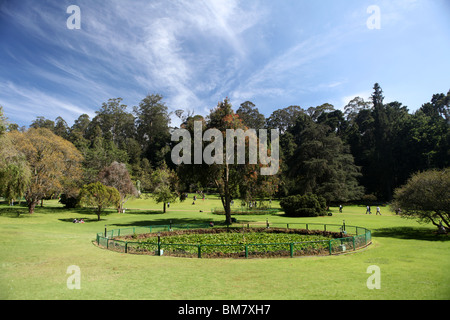 Gorgeous India Tamil Nadu Udhagamandalam Ooty Botanical Gardens  With Magnificent The Botanical Gardens At Ooty Short For Ootacamund A Hill Station Resort  Town In With Beautiful Garden Planning Also Garden Table Umbrella In Addition Covent Garden Recruitment And Busch Gardens America As Well As The Night Garden Book Additionally Cottage Garden Book From Alamycom With   Magnificent India Tamil Nadu Udhagamandalam Ooty Botanical Gardens  With Beautiful The Botanical Gardens At Ooty Short For Ootacamund A Hill Station Resort  Town In And Gorgeous Garden Planning Also Garden Table Umbrella In Addition Covent Garden Recruitment From Alamycom