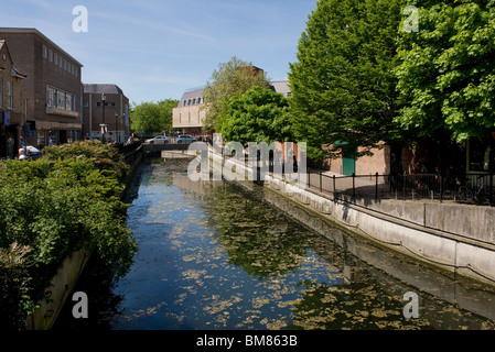 The River Chelmer running through Chelmsford in Essex.  Photo by Gordon Scammell - Stock Photo