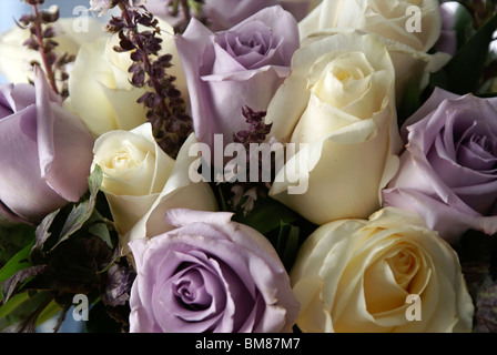 wedding bouquet of white and purple roses up close filling entire image - Stock Photo