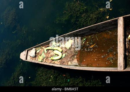 A portion of boat selling pumpkin  in Dal lake Srinagar, Jammu and kashmir, india - Stock Photo