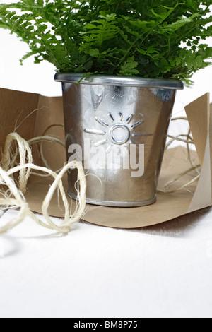 flowerpot with sun sign