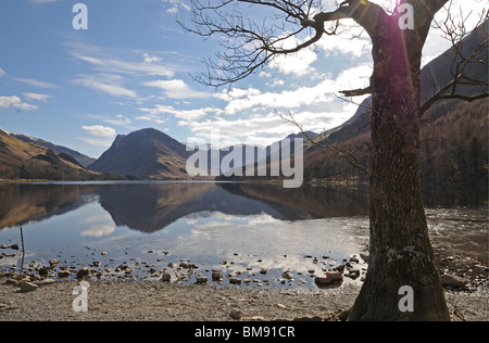 Buttermere Lake and valley with Fleetwith Pike seen through trees at the western end of the lake Cumbria English - Stock Photo