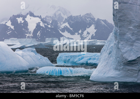Large field of blue icebergs floating in stormy ocean with snow covered mountains of South Georgia in background - Stock Photo