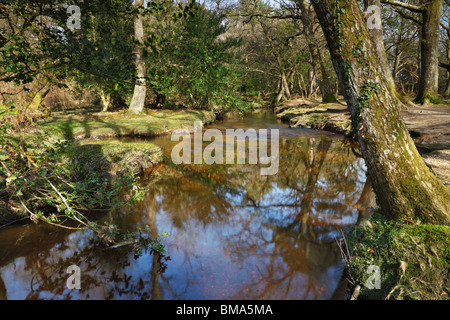 Ober Water, New Forest, Hampshire, lies in the middle of the New Forest at the edge of the Rhinefield Ornamental - Stock Photo