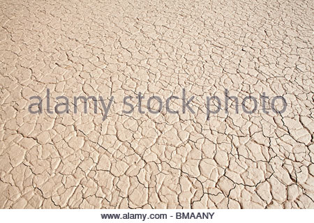 Cracked surface of salt pan - Stock Photo