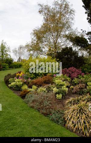 WINTER SHRUBBERY AND BORDER AT RHS HYDE HALL. ESSEX UK. - Stock Photo