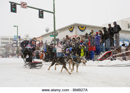 Alaska, Anchorage. Fur Rondezvous winter carnival. World Championship Dog Sled Races. - Stock Photo