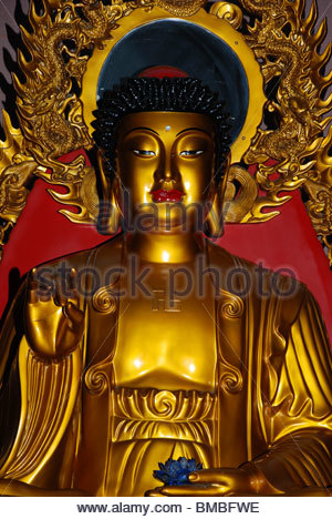 lahaina buddhist personals Maui's best 100% free buddhist dating site meet thousands of single buddhists in maui with mingle2's free buddhist personal ads and chat rooms our network of buddhist men and women in maui is the perfect place to make buddhist friends or find a buddhist boyfriend or girlfriend in maui.
